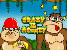Crazy Monkey 0 на игорный дом Вулкан
