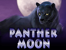 Panther Moon в автоматах от Вулкана