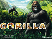 Автомат Вулкана Gorilla онлайн