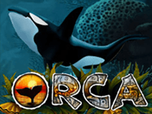 Игровой онлайн станок Orca на игорный дом Вулкан