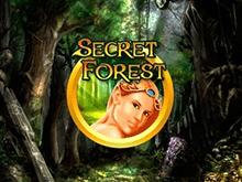 Автомат в казино Вулкан - Secret Forest