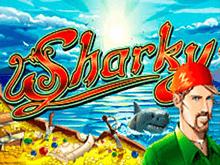 Sharky в казино Вулкан