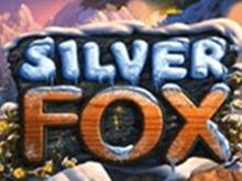 Автомат онлайн Silver Fox в Вулкане