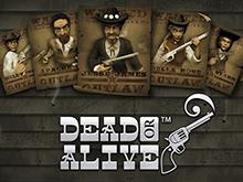 Азартный игровой онлайн слот Dead Or Alive